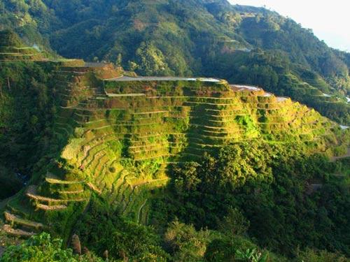 Choáng ngợp ruộng bậc thang Philippines - 9