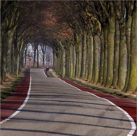 Chiêm ngưỡng những con đường đẹp như tuyệt tác nghệ thuật - 12