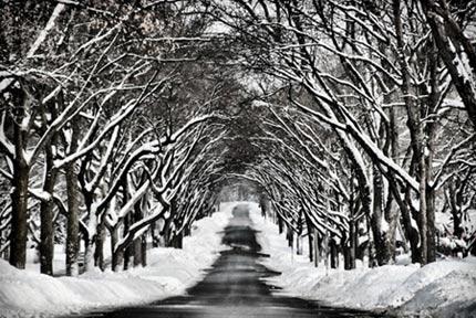 Chiêm ngưỡng những con đường đẹp như tuyệt tác nghệ thuật - 8