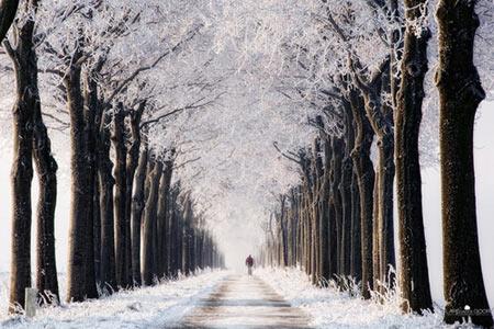Chiêm ngưỡng những con đường đẹp như tuyệt tác nghệ thuật - 9
