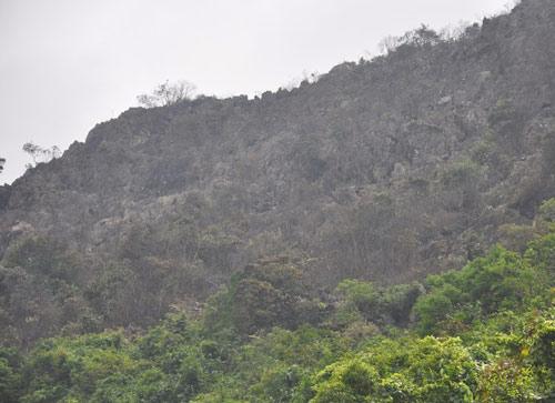 Đã dập tắt được đám cháy rừng gần 30 ha - 3