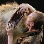 Phi thường - kỳ quặc - Thót tim cảnh người khiêu vũ với sư tử