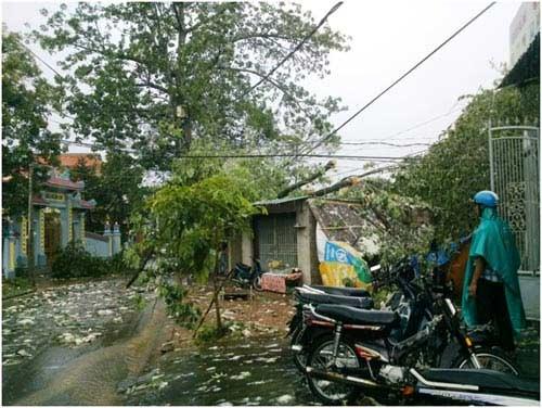Lốc và mưa đá gây thiệt hại tại Huế