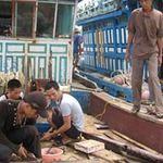 """Thị trường - Tiêu dùng - Hàng trăm ngư dân làm """"chui"""" cho tàu cá TQ"""
