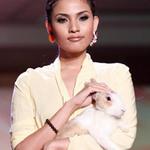 Thời trang - Trương Thị May bế thỏ cưng lên sàn diễn