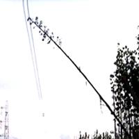 Cảnh báo vi phạm hành lang an toàn lưới điện