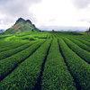 10 địa điểm du lịch trốn nóng ở Việt Nam
