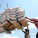 Thị trường - Tiêu dùng - VN đang bỏ xa Thái Lan về xuất khẩu gạo