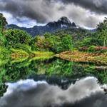 Du lịch - Đẹp mê mẩn những khu rừng nhiệt đới xanh mướt