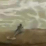 """Phi thường - kỳ quặc - Video gây tranh cãi về """"ẩn số"""" người cá"""