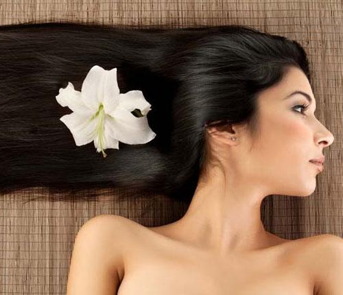 Spa tại gia giúp tóc mọc nhanh - 2