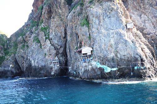 Ngất ngây đảo yến trên vịnh Nha Trang - 4