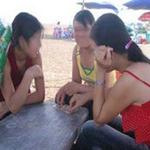 Tin tức trong ngày - Không phát hiện có mại dâm ở Đồ Sơn, Quất Lâm