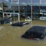 Ô tô - Xe máy - 'Báo gấm' Jaguar F-Type sặc sụa trong nước