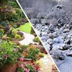 Du lịch - Ngất ngây với khu vườn bốn mùa ở Anh