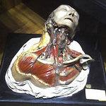 Phi thường - kỳ quặc - Rợn tóc gáy vì bảo tàng ma quỷ, kỳ quái