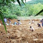 """Tin tức trong ngày - Bác tin đào """"kho vàng 2 tấn"""" ở Lai Châu"""