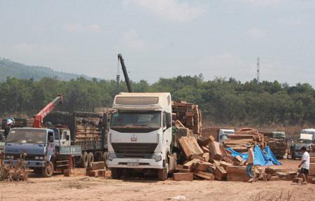 """Xem """"xe vua"""" chở gỗ khủng tự hạ tải - 6"""