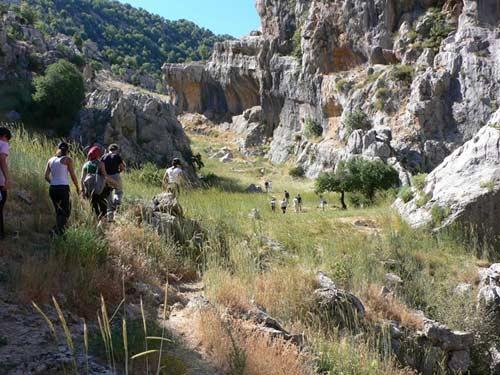 Chiêm ngưỡng ngọn thác ngoạn mục ở Lebanon - 15