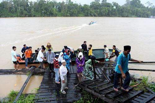 Vương quốc' đười ươi, khỉ mũi dài ở Malaysia - 1