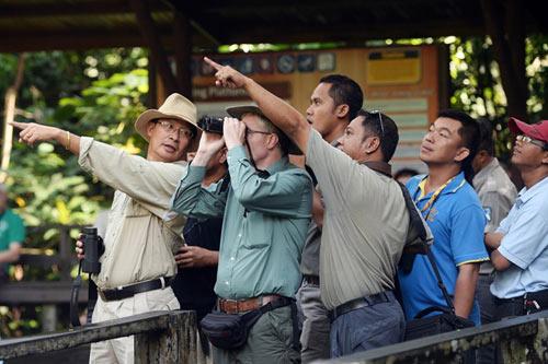 Vương quốc' đười ươi, khỉ mũi dài ở Malaysia - 10