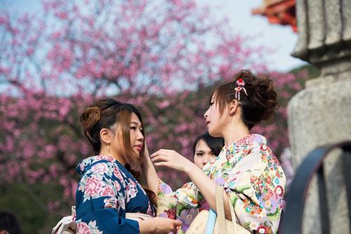 Mùa hoa anh đào nở rực rỡ Nhật Bản - 5