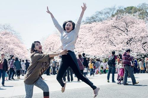 Mùa hoa anh đào nở rực rỡ Nhật Bản - 14