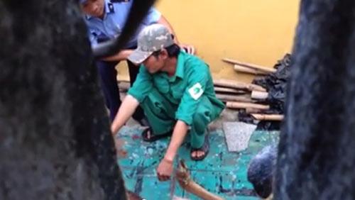 Lộ clip bảo vệ, nhân viên xẻ thịt nai ngay vườn thú - 4