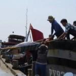 Thị trường - Tiêu dùng - Cá ngừ Việt Nam: Sản lượng cao, đẳng cấp thấp