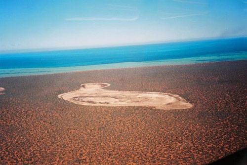 Đẹp ngoạn mục hồ thạch cao ở vịnh Cá mập - 7