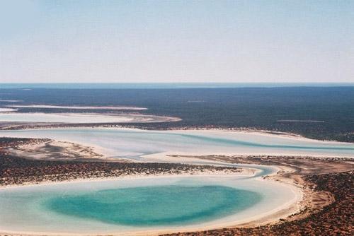 Đẹp ngoạn mục hồ thạch cao ở vịnh Cá mập - 3