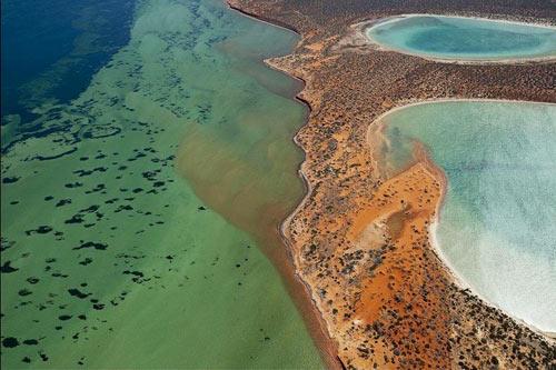 Đẹp ngoạn mục hồ thạch cao ở vịnh Cá mập - 5