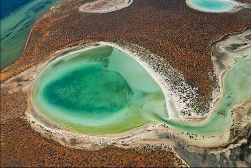 Đẹp ngoạn mục hồ thạch cao ở vịnh Cá mập - 8