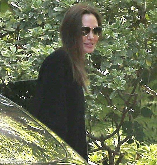 Brad Pitt và Angelina Jolie hẹn hò lãng mạn - 1