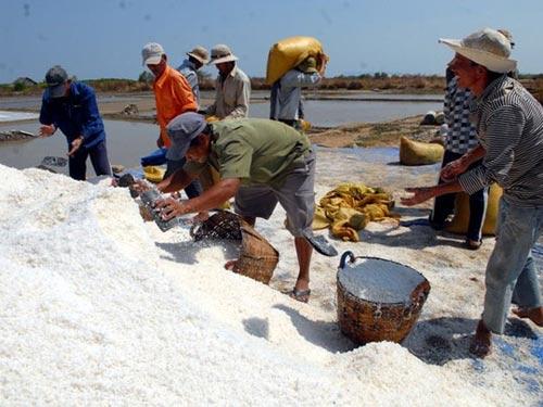 Cần Giờ: Kiếm trăm triệu nhờ làm muối - 1