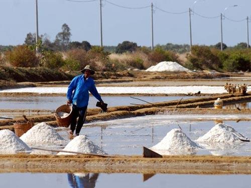Cần Giờ: Kiếm trăm triệu nhờ làm muối - 2