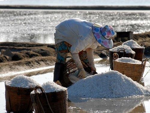 Cần Giờ: Kiếm trăm triệu nhờ làm muối - 3