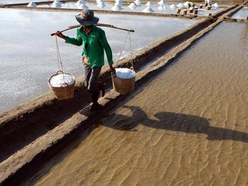 Cần Giờ: Kiếm trăm triệu nhờ làm muối - 5