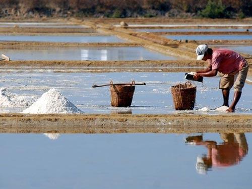 Cần Giờ: Kiếm trăm triệu nhờ làm muối - 6