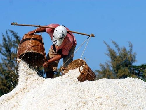 Cần Giờ: Kiếm trăm triệu nhờ làm muối - 7