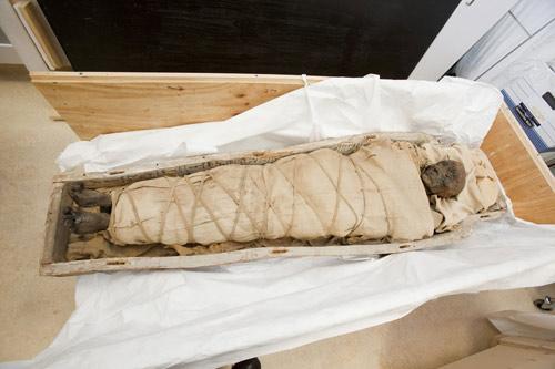 Xác ướp Ai Cập còn nguyên não độc nhất vô nhị - 1