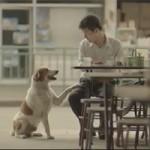 Bạn trẻ - Cuộc sống - Cảm động lòng tốt của chàng trai nghèo