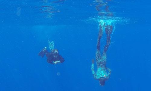 Australia phát hiện thêm tín hiệu nghi là của MH370 - 1