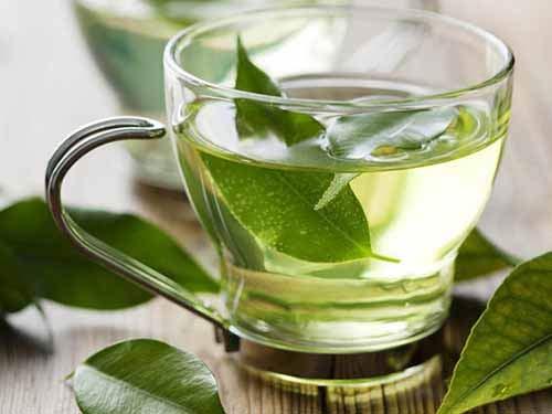 Công dụng tuyệt vời của trà xanh - 1