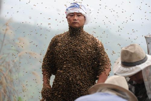 TQ: Dị nhân để 45 kg ong bâu kín người - 4