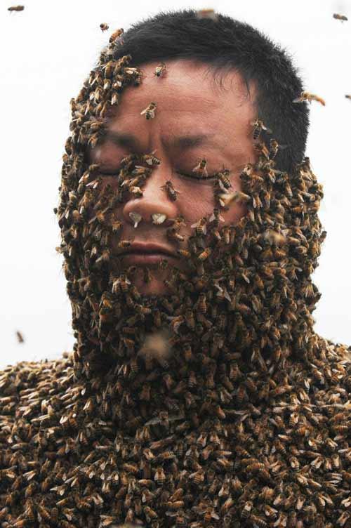 TQ: Dị nhân để 45 kg ong bâu kín người - 6
