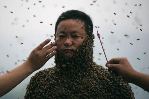 TQ: Dị nhân để 45 kg ong bâu kín người - 5