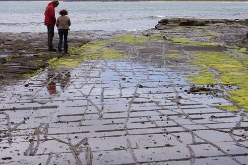 Vỉa hè lát đá ngoạn mục ở hòn đảo Tasmania, Úc - 4