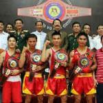Thể thao - Khai hội võ Việt