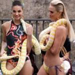 Thời trang - Người mẫu bikini bế trăn bạch tạng lên sàn diễn